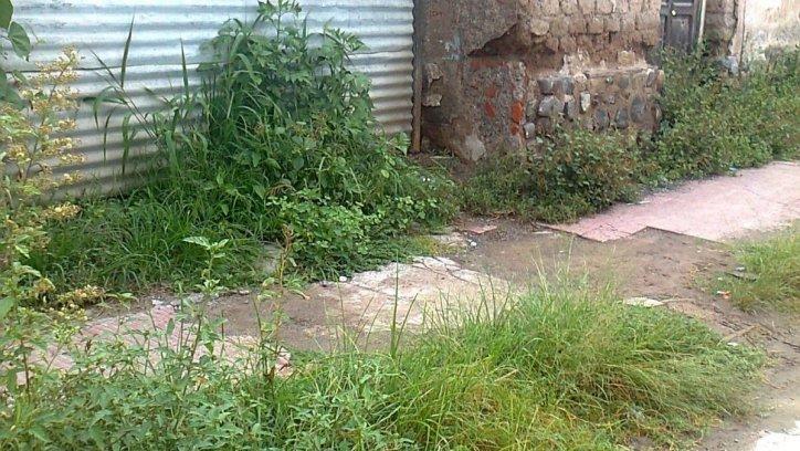 Baldío usurpado en calle General Roca al 100, en Rosario de Lerma. Enviada a través de WhatsApp El Tribuno