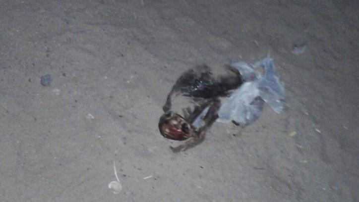 El cuerpo hallado en San Carlos. Crédito: FM La Voz San Carlos (Facebook)