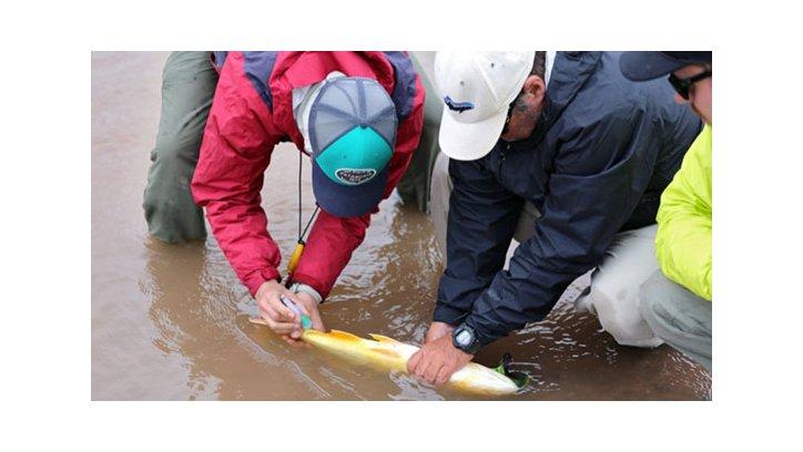 Capacitación en recursos pesqueros