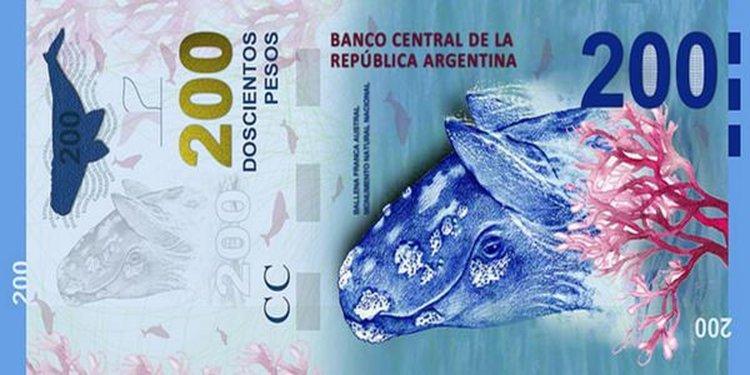 Billete de 200 pesos que saldrá próximamente con la Ballena Austral.
