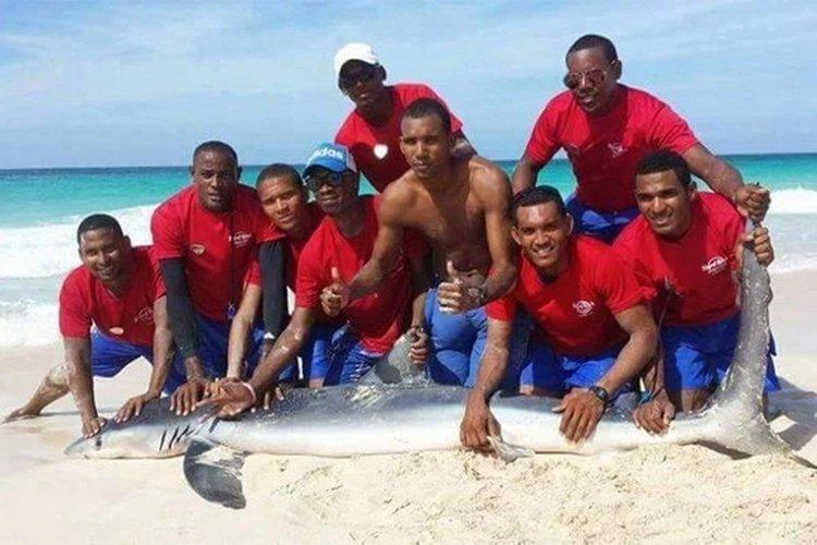 Los salvavidas con el tiburón muerto.