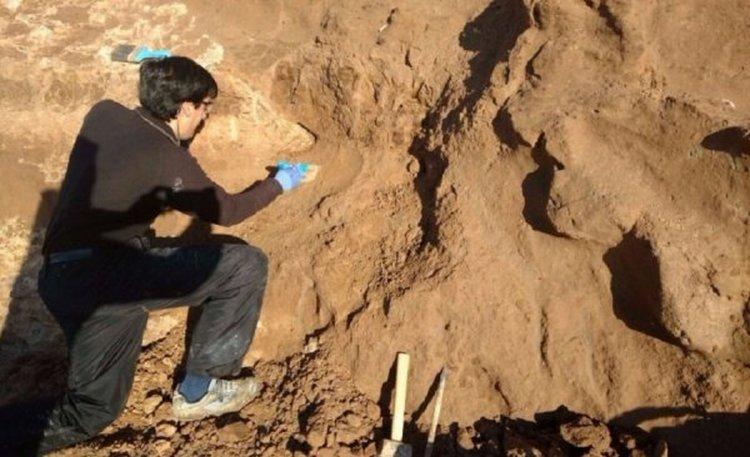 Acumulación de una gran cantidad de restos de animales pequeños que vivieron hace más de 500.000 años atrás.