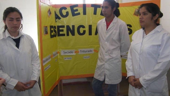 Los estudiantes dieron explicaciones sobre el proyecto para fabricar aceite esencial.