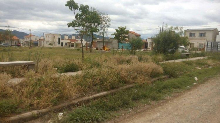 La plaza del Barrio Mirasoles, donde los chicos habitualmente juegan. Está abarrotada de pastos altos.