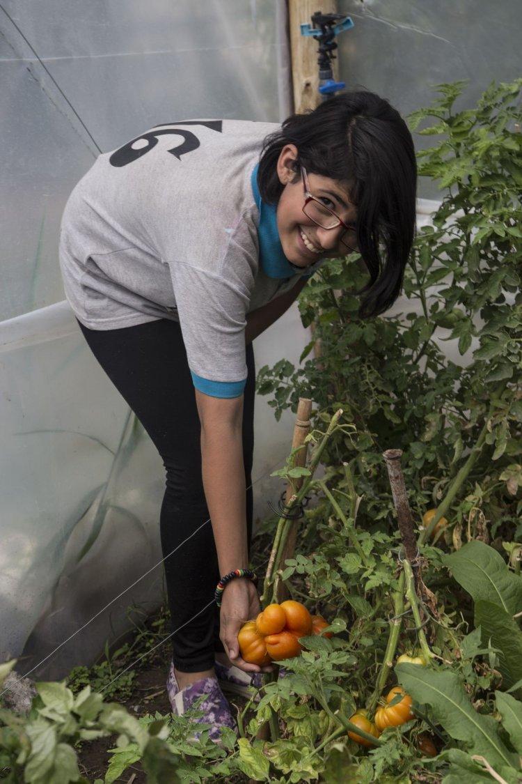 Una adolescente muestra los tomates que crecen en la huerta de la escuela en Cerrillos. Foto: Andrés Mansilla