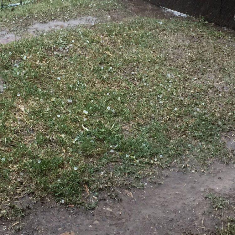 Pequeñas pelotitas de granizo cayeron en algunos lugares de Salta antes de la lluvia.