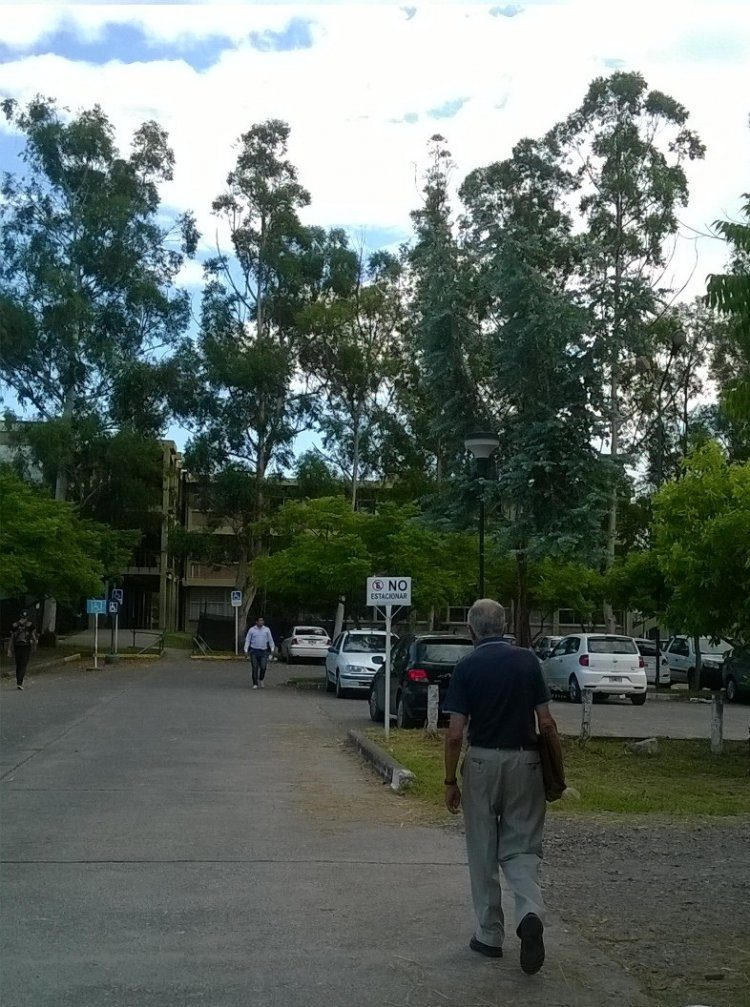 El doctor Basombrío llega todas las mañanas en colectivo a la UNSa. Foto: Bernardita Ponce Mora
