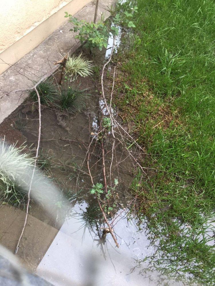 Los vecinos del Block 37 del complejo habitacional de Parque La Vega denuncian que hace 10 días sufren el desborde de una cloaca.