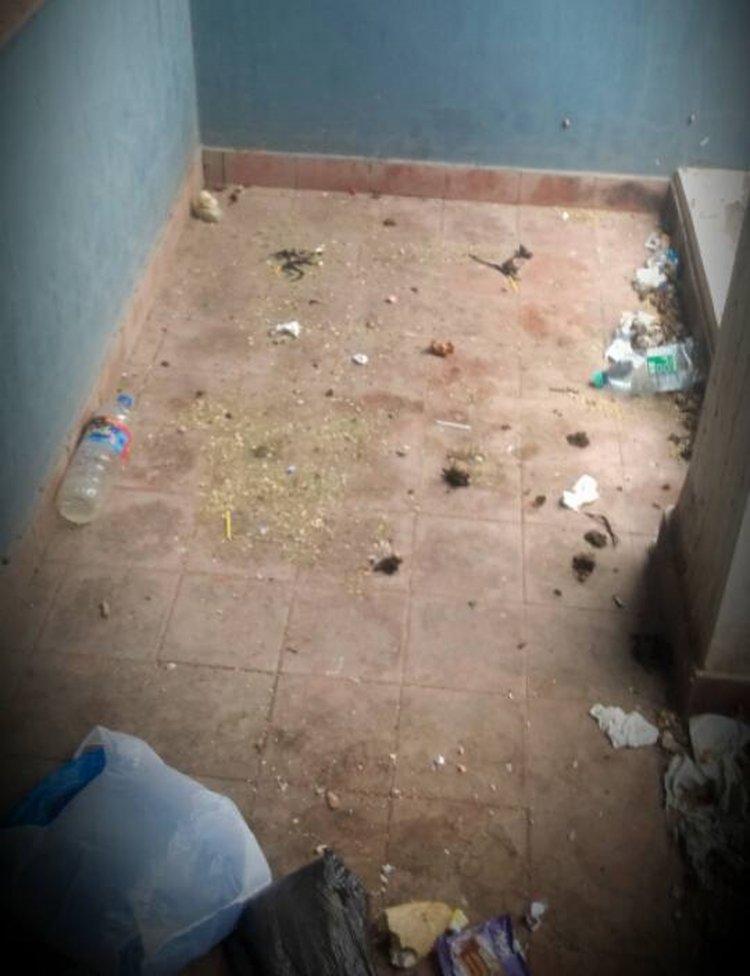 Los acullicos tirados en los pisos.